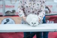 """Выставка """"Пряничные кошки"""" в ТРЦ """"Макси"""", Фото: 31"""