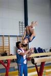 Региональное первенство по спортивной гимнастике. 20 -22 марта 2014, Фото: 8