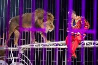 Шоу фонтанов «13 месяцев»: успей увидеть уникальную программу в Тульском цирке, Фото: 208