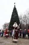 Открытие елки на площади искусств. 19.12.2014, Фото: 54