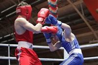 XIX Всероссийский турнир по боксу класса «А», Фото: 22