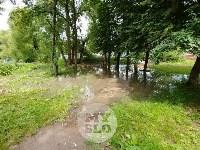 Дворы на Красноармейском проспекте затопило нечистотами, Фото: 10