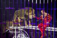 Шоу фонтанов «13 месяцев» в Тульском цирке – подарите себе и близким путевку в сказку!, Фото: 68