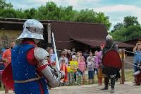 В Туле прошел народный фестиваль «Дорога в Кордно. Путь домой», Фото: 144