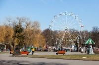 Солнечный день в Белоусовском парке, Фото: 25