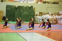 Открытое первенство и чемпионат Тульской области по сётокану, Фото: 17