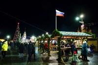 В Туле завершились новогодние гуляния, Фото: 75