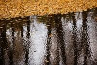 Золотая осень в Туле-2019, Фото: 111
