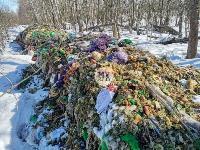 Под Тулой неизвестные сбросили в лесополосе несколько тонн гнилых овощей, Фото: 4