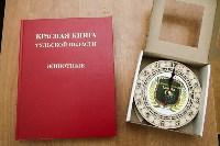 В школах Новомосковска стартовал экологический проект «Разделяй и сохраняй», Фото: 2