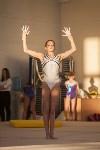 Первенство ЦФО по спортивной гимнастике, Фото: 89