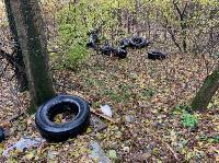 Под Новомосковском ликвидированы две незаконные свалки, Фото: 1