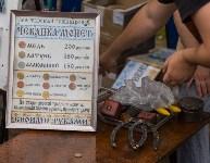 Фестиваль крапивы 2015, Фото: 25