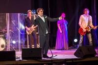Концерт Григория Лепса в Туле. 12 мая 2015 года, Фото: 11
