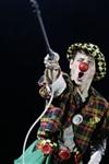 В Тульском цирке прошла премьера аква-шоу, Фото: 18