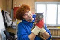 Волонтеры спасли кошек из адской квартиры, Фото: 79