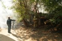 Пожар около Фролова, Фото: 5