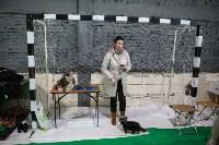 Выставка собак в Туле, Фото: 77