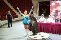 Пресс-конференция в Тульском цирке, Фото: 13