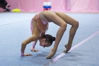 Соревнования по художественной гимнастике 31 марта-1 апреля 2016 года, Фото: 138