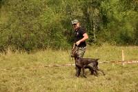 Выставка охотничьих собак под Тулой, Фото: 100