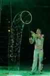 В Тульском цирке прошла премьера аква-шоу, Фото: 62