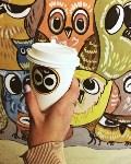 Сова, кофейня, Фото: 1