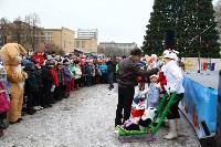 Открытие елки на площади искусств. 19.12.2014, Фото: 40
