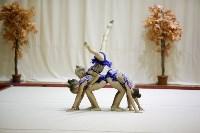 """Соревнования по художественной гимнастике """"Осенний вальс"""", Фото: 152"""