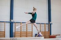 Первенство ЦФО по спортивной гимнастике среди юниорок, Фото: 28