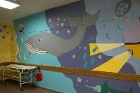 Роспись стен в больнице, Фото: 9