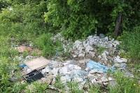 В тульском Заречье жители год добиваются ликвидации ядовитой свалки, Фото: 19
