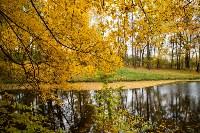 Золотая осень в Туле-2019, Фото: 29