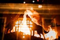 Как украсили Тулу к Новому году, Фото: 55
