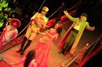 Цирк «Вива, Зорро!» в Туле , Фото: 57