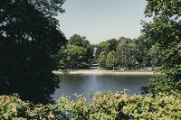 Летний день в богородицком парке, Фото: 54