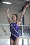 Соревнования по спортивной гимнастике на призы Заслуженных мастеров спорта , Фото: 46