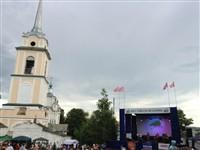 Фестиваль крапивы 2013, Фото: 20