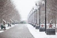 Мартовский снег в Туле, Фото: 69