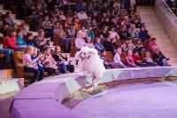Туляков приглашают на новогоднее представление «Ёлка в цирке», Фото: 48