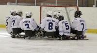 «Матч звезд» по следж-хоккею в Алексине, Фото: 12