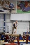 Спортивная гимнастика в Туле 3.12, Фото: 158
