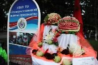 В Пролетарском округе Тулы начали праздновать День города, Фото: 9