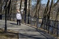 Солнечный день в Белоусовском парке, Фото: 20
