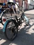 Туляк едет на Чёрное море на велосипеде, Фото: 61