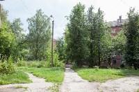 Яблоневый сад и роща на ул. Серова, Фото: 10
