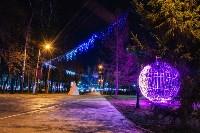 Тульские парки украсили к Новому году, Фото: 15