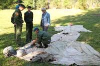 Принятие присяги в Первомайском кадестком корпусе, Фото: 3