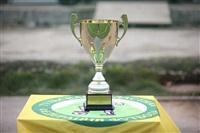 «Алексин» стал обладателем регионального Суперкубка по футболу, Фото: 1