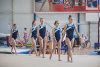 Первенство ЦФО по спортивной гимнастике, Фото: 59